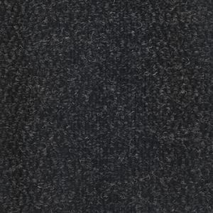 795 – Carvão
