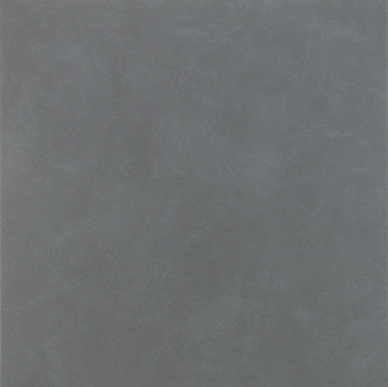24564044